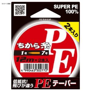 ヤマトヨテグス(YAMATOYO) PEちから糸 2本セット 12m