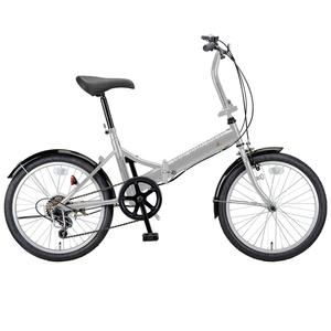 キャプテンスタッグ(CAPTAIN STAG) ライヤー FDB206 折り畳み自転車 20インチ 6段変速 軽量 YG-272 20インチ変速付き折りたたみ自転車