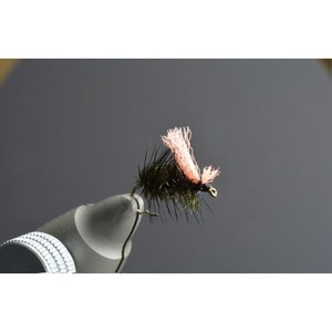 Bush Craft(ブッシュクラフト) ADWグリフィスナット ブラック #14 A69 07-05-fake-0018
