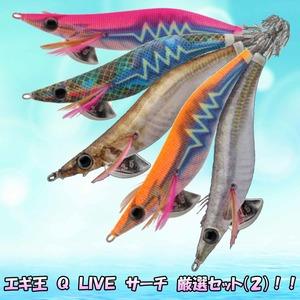 エギ王 Q LIVE サーチ 厳選セット(オールマイティ)!!