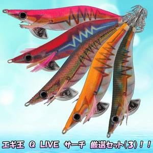 エギ王 Q LIVE サーチ 厳選セット(朝マズメ&夕マズメに最適)!!