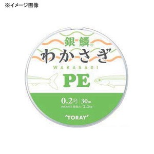 東レモノフィラメント(TORAY) 銀鱗 わかさぎ PE 30m