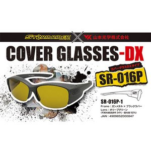 ストームライダー(STORM RIDER) SR-016-P COVER GLASSES-DX