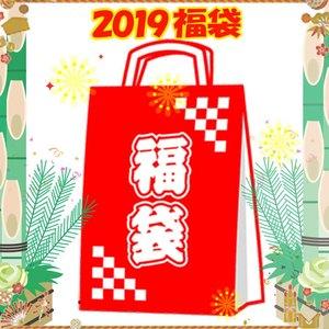 ナチュラム 【2019新春福袋】ノースのビジネスバッグ&MEの定番売筋レトロダウン+小物の計3点セット メンズダウン・化繊ジャケット