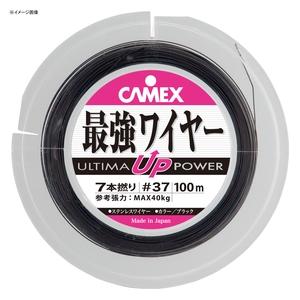 CAMEX(キャメックス) ULTIMA最強ワイヤー 19本撚 50m スレッド・ワイヤー・ティンセル