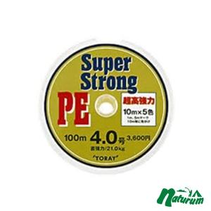 東レインターナショナル(TORAY)スーパーストロング PE 100m×12