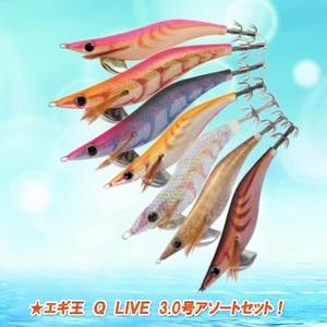 ナチュラム エギ王 Q LIVE 3.0号アソートセット! 9933231 エギセット