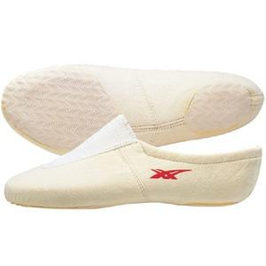 アシックス(asics) 体操EX 22cm・02(アイボリー) TGY501