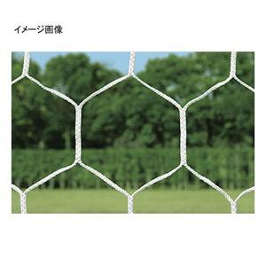 トーエイライト スクールJr亀甲サッカーネット 白 B-3627