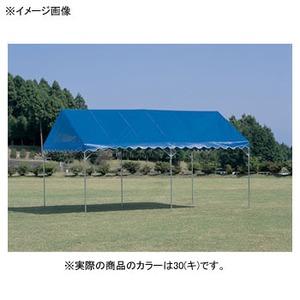 【送料無料】EVERNEW(エバニュー) 集会用テントカラーCD-1 30(キ) EKA834