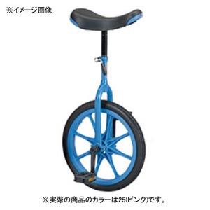 【送料無料】EVERNEW(エバニュー) 一輪車(ノ-パンク) 16 25(ピンク) EKD136