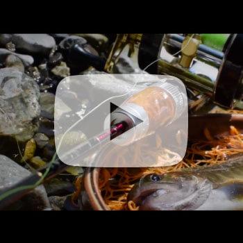 渓流を味わうイメージ映像